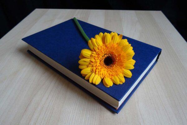 چرا باید شعر بخوانیم؟